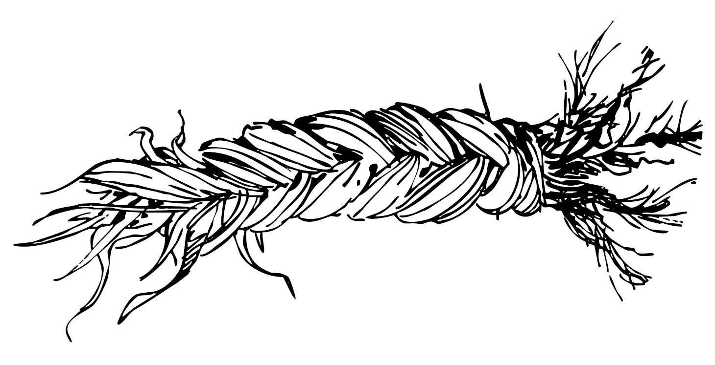 A black and white drawing of a braid of sweetgrass